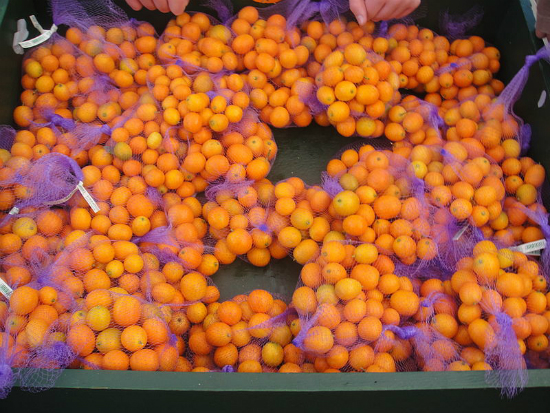 Kumquats - tricky little bleeders. Pic from Wikipedia Commons