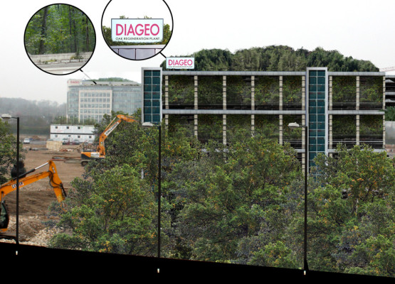 Diageo's Multi-Level Forest
