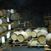 Whisky Casks at Mackmyra