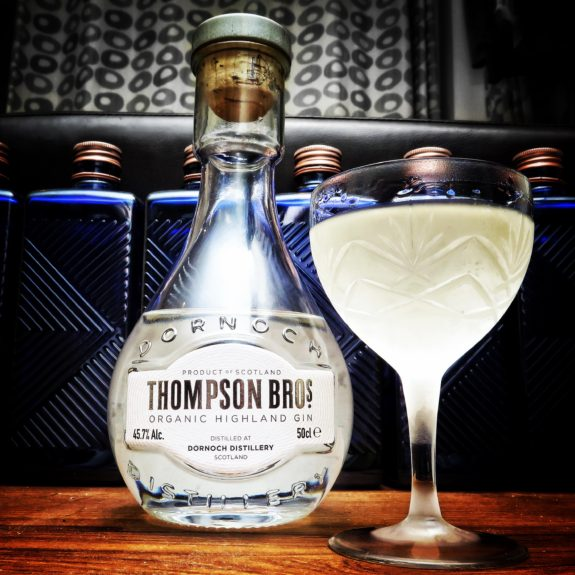 Thompson Brothers Organic Gin Martini