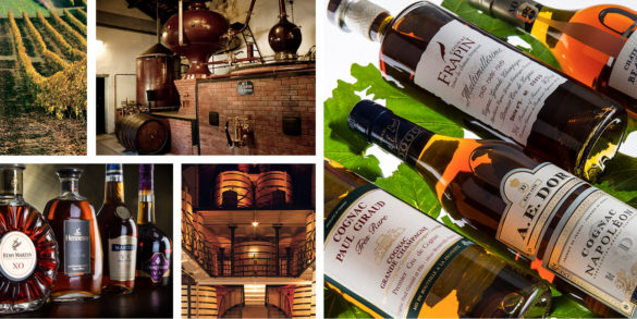 Cognac Show