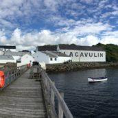 Islay Festival Queues