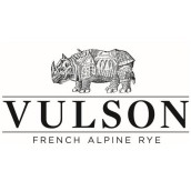 Vulson Logo