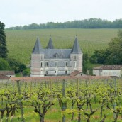 Château Fontpinot, Cognac Frapin