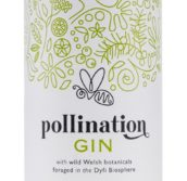 Pollination Gin featured image