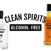 TWE Clean Spirits logo