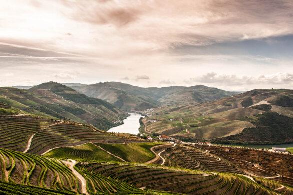 Douro Valley Port